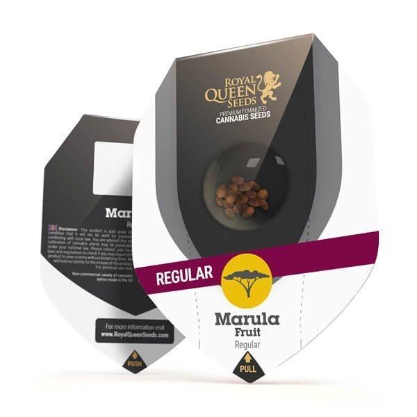 Marula Fruit Regular