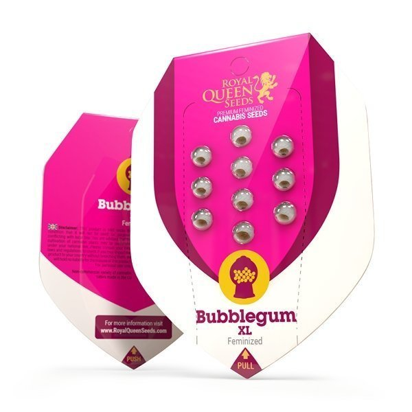bubblegumxl