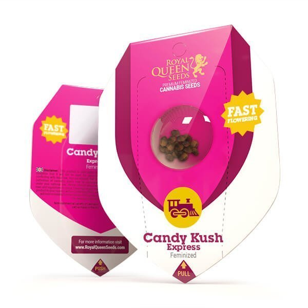 candy-kush-express-fast-flowering